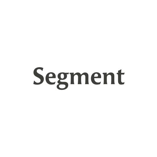 segment-avatar-big