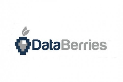 logo_databerries