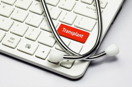 Transplant organ text and Stethoscope